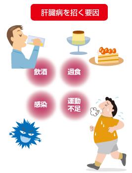 ん 症状 が 肝臓 軽度の肝機能障害に表れる初期症状とは